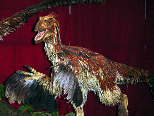 deinonychus feathered
