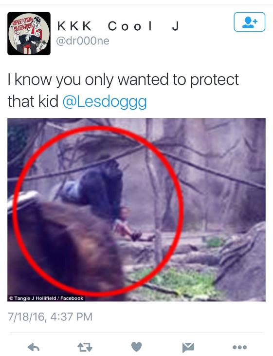 milo-leslie-jones-twitter-gorilla-pic